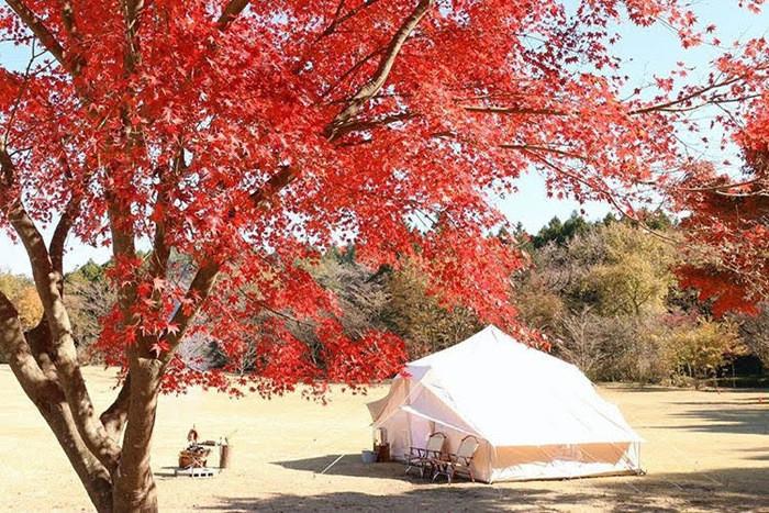 耶馬渓で季節のアクティビティを楽しもう!