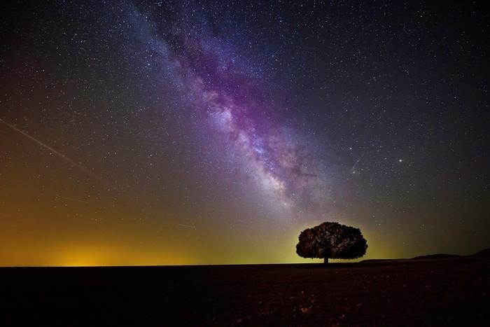 【男女別】八白土星の性格と運勢・相性のいい星・吉方位の調べ方