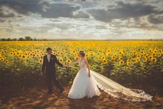 結婚の相性占い|姓名判断/生年月日/九星気学/名前/四柱推命