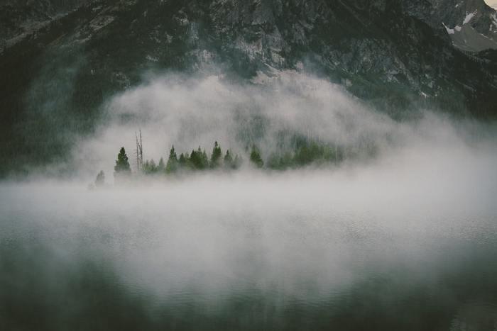 死後の世界はあるのかないのか・おすすめの本・意識の存在の有無